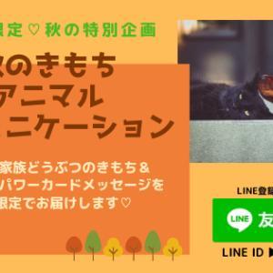 【秋の特別企画♡】秋のきもちアニマルコミュニケーション