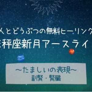 10/16天秤座新月前夜〈たましいの表現〉犬猫と一緒にアースライトヒーリング