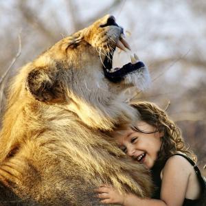 人とトラがじゃれ遊ぶ♡最高の愛の形