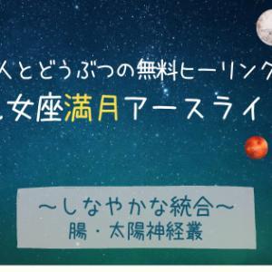 2/27乙女座満月〈しなやかな統合〉人とどうぶつの無料ヒーリング