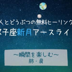 6/10 双子座新月〈瞬間を楽しむ〉人とどうぶつの無料ヒーリング