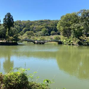 町田薬師池公園とシャトレーゼ