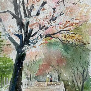桜の散る道