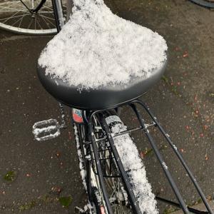 雪降ってきたー