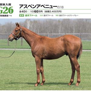 【G1TC募集馬】No,26 アスペンアベニューの2018(牡1)の意図ある配合に痺れる。