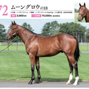 【キャロット募集確定馬】No,72 ムーングロウの2018(牡1)はナゾの惑星馬か?これでギャンブルするのも一案かも。