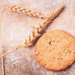 全粒粉と小麦粉の違いは