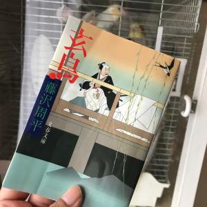 藤沢周平「玄鳥」「鷦鷯(みそさざい)」