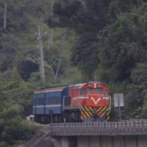 今年は飯田線ではなく台湾鉄道へ行って来ました!  [52]  [今日はインゲン豆の日]