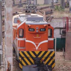 今年は飯田線ではなく台湾鉄道へ行って来ました! ㉔ [24]  [今日は国民皆泳の日]