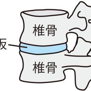 腰椎椎間板ヘルニア症 : たかだ鍼灸接骨院での施術