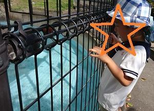 長野市城山動物園 ♡4歳2か月・1歳4か月