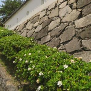 駅の真ん前にある「福山城跡3」