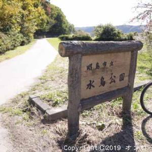 【MTB】多摩川サイクリング道路を走りました!  [今日はピザの日]