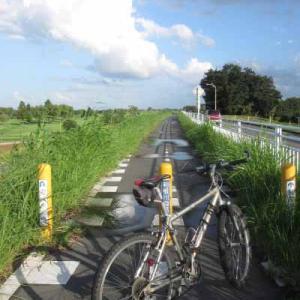 【MTB】利根川自転車道路を走りました!②  [今日はいい夫婦の日]