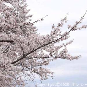 【MTB】多摩川サイクリングロード左岸!①  [今日はエスプレッソの日]