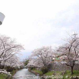 【MTB】多摩川サイクリングロード左岸!③  [今日はよい夫婦の日]