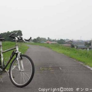 【MTB】利根川自転車道路右岸を走りました! ②  [今日は七夕の日]