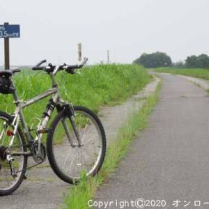 【MTB】利根川自転車道路右岸を走りました! ⑤  [今日は肉の日]