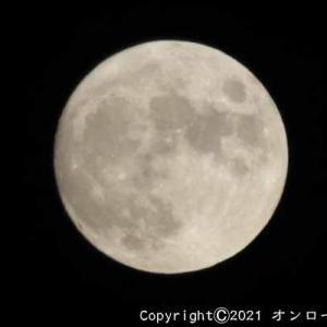 【写真】今日は月見酒の日