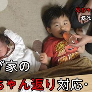 【動画】双子妊娠や赤ちゃん返り
