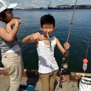 泉大津の汐見埠頭砂上げ場でサヨリのウキ釣り
