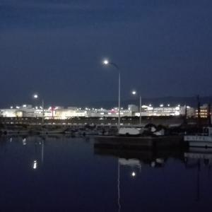 夜釣りで釣れる魚~夜釣りのメリットとデメリット~