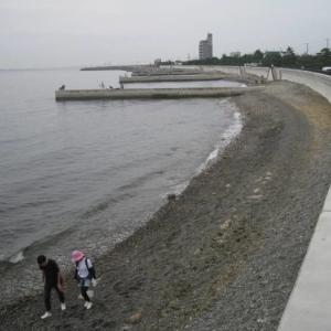 【釣り場ガイド】みさき公園裏は投げ釣りとアオリの優良スポット