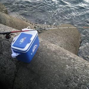 【極めロッド】穴釣りには『極光テトラDX』がお勧め!!