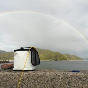 舞鶴の白杉漁港でアオリイカ釣りのはずがアジ釣果のみ