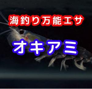 【極めエサ】オキアミ 刺し餌にコマセに大活躍!