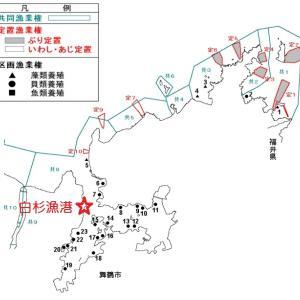 京都はタコ釣り禁止~タコ釣りは漁業権設定海域に注意