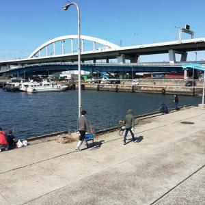 南港の釣り場巡り~コロナ禍で釣り人が増えている?