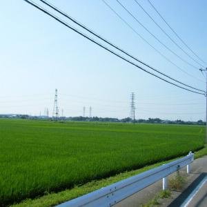 鳩山ポタリング(埼玉県鳩山町)2015.07.11