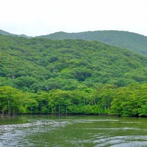 どんなに文明が発達したとしても、自然の関係性は変わらない -壬己濁水-