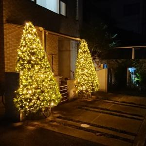 クリスマスイルミネーション 2019