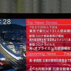 閑雲野鶴日記 2020年(令和2年)7月28日 火曜日 梅雨寒