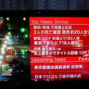 閑雲野鶴日記 2021年(令和3年)7月4日 日曜日 「桜桃」