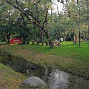 富山県・何ココ?!って思った墓の木自然公園キャンプ場【4年目・16泊目】