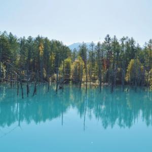 錦秋の北海道へ・・・青い池