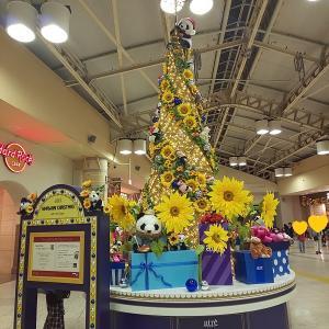 HIMAWARI CHRISTMAS @上野駅
