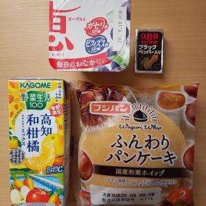 本日の朝ご飯&お昼ご飯  2020/09/09