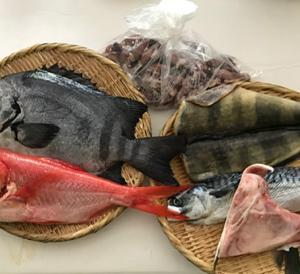 石鯛のお刺身&ホタルイカと菜の花の芥子酢味噌和え