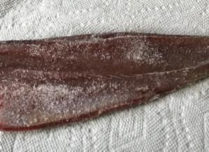 戻り鰹の塩締め&キビナゴのお刺身 ♪9月の魚のお取り寄せ♪