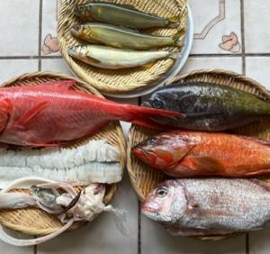 魚のお取り寄せ_2021年6月