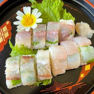 ウメイロの昆布締めの押し寿司
