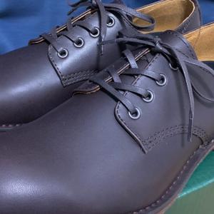 「ダナー」の短靴が安かった―私のTポイント投資大作戦(2020年11月)