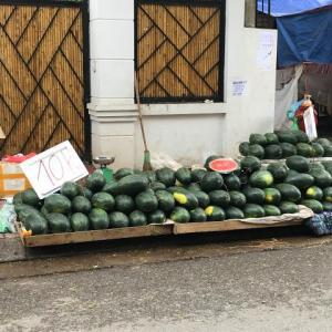 【果物激安!】スイカが1kg50円!中国向けに輸出できなくなった影響だそうです