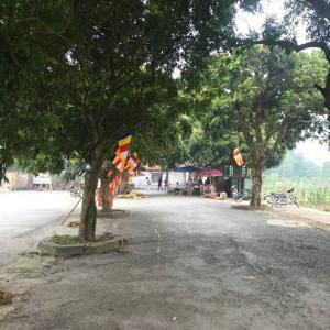 ベトナム政府が「23日以降は隔離政策を緩和」することを匂わせる(^^)