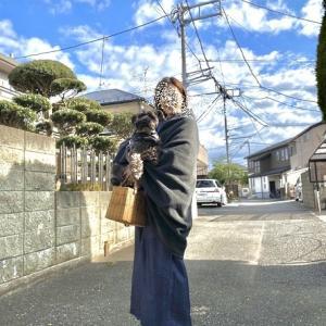 お正月の着物と樹木希林さんの展示